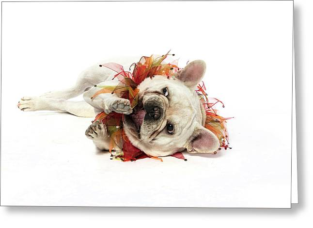 3010.113 Therapet Greeting Card by M K  Miller
