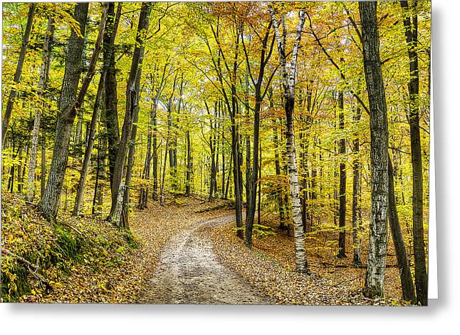 Fall In Sleeping Bear Dunes Greeting Card by Twenty Two North Photography