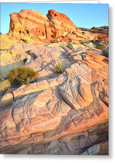 Valley Of Fire Greeting Card by Ray Mathis