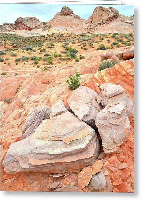 Greeting Card featuring the photograph Multicolored Sandstone In Valley Of Fire by Ray Mathis