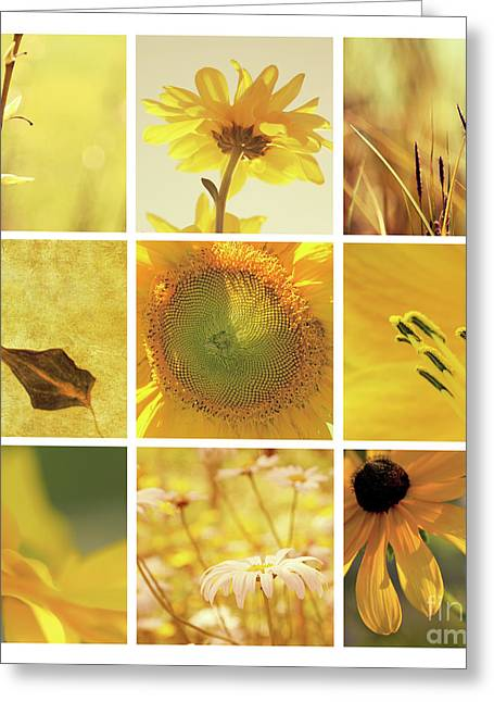 Aimelle Photography Greeting Cards - 3x3 Yellow Greeting Card by Aimelle