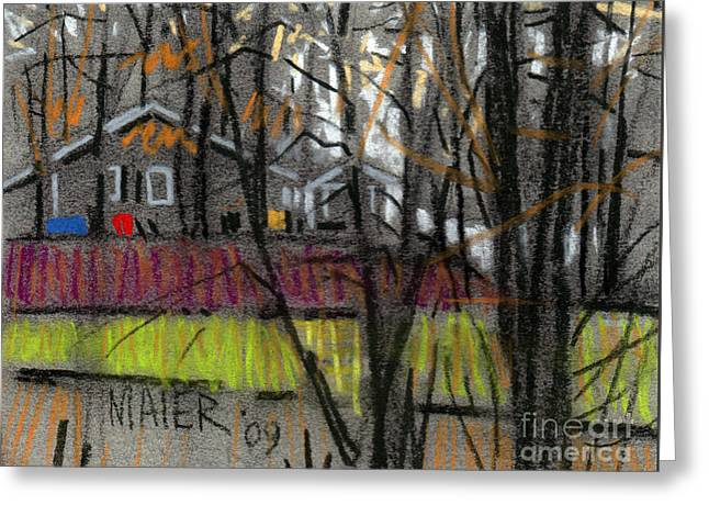 Across The Creek Greeting Card by Donald Maier