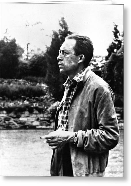 Albert Camus (1913-1960) Greeting Card by Granger
