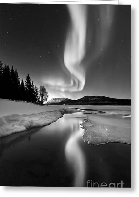 Mirror Reflection Greeting Cards - Aurora Borealis Over Sandvannet Lake Greeting Card by Arild Heitmann