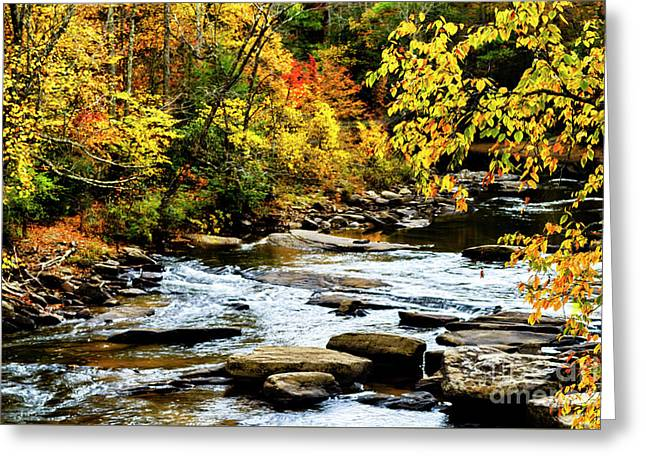 Autumn Middle Fork River Greeting Card