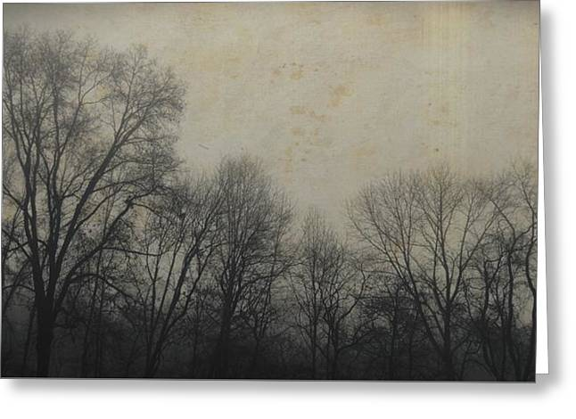 Bare Branch Horizon Greeting Card by JAMART Photography