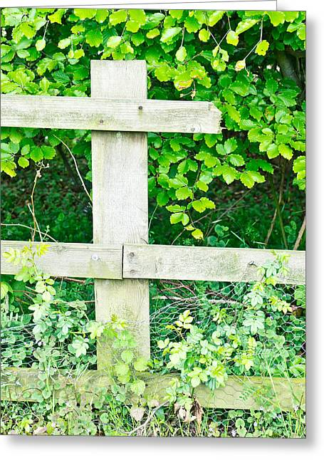 Broken Fence Greeting Card by Tom Gowanlock