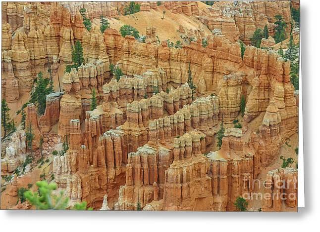Bryce National Park, Utah Greeting Card by Patricia Hofmeester