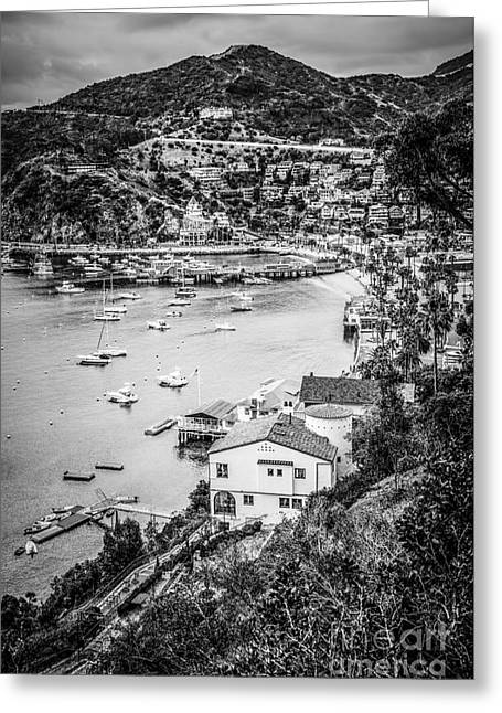 Catalina Island Avalon Bay Black And White Photo Greeting Card