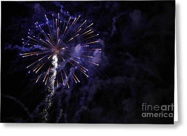 Fireworks Greeting Card by Diane Falk