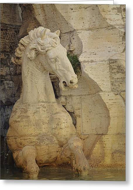 Horse In Fountain  Greeting Card by JAMART Photography