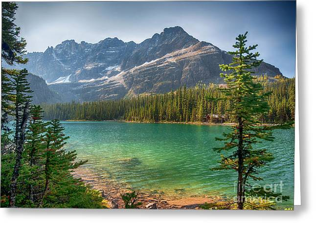 Lake O'hara - Yoho National Park Greeting Card by Yefim Bam