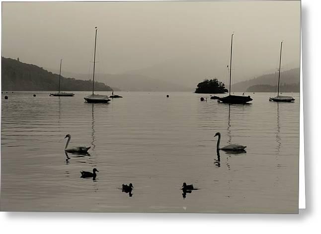 Lake Windermere Greeting Card by Martin Newman