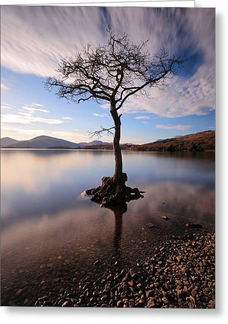 Loch Lomond Tree Greeting Card by Grant Glendinning