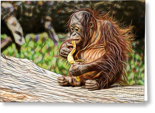 Orangutan Collection Greeting Card