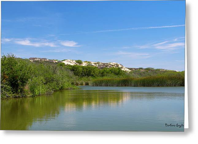 Oso Flaco Lake California State Park II Greeting Card by Barbara Snyder