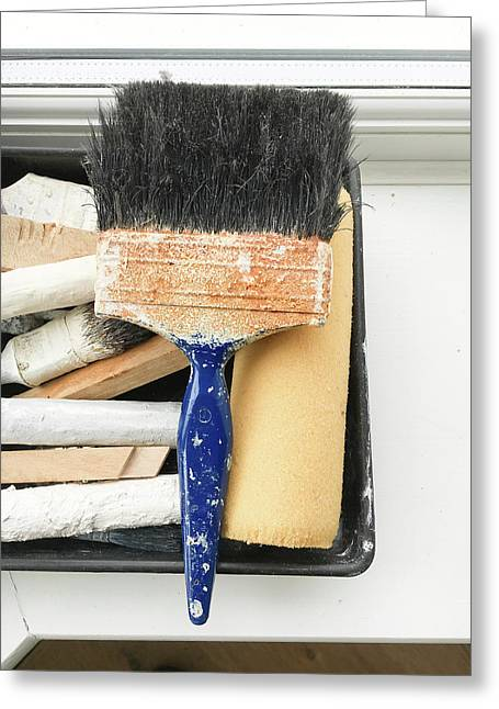 Paint Brushes Greeting Card
