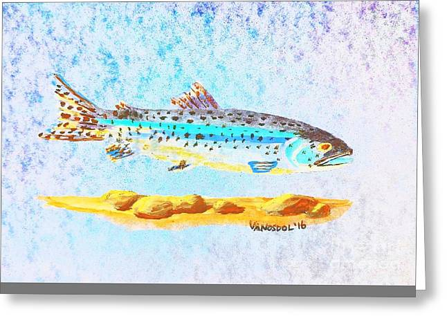 Rainbow Trout Greeting Card by Scott D Van Osdol