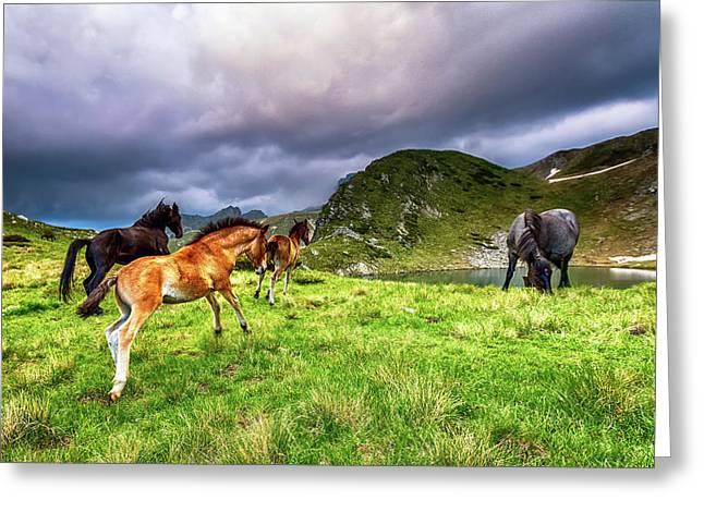 Rila Mountain Greeting Card by Evgeni Dinev