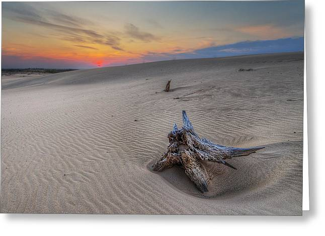 Silver Lake Sand Dunes Greeting Card by Twenty Two North Photography