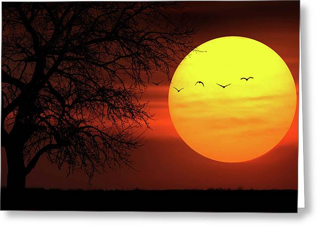 Sunset Greeting Card by Bess Hamiti