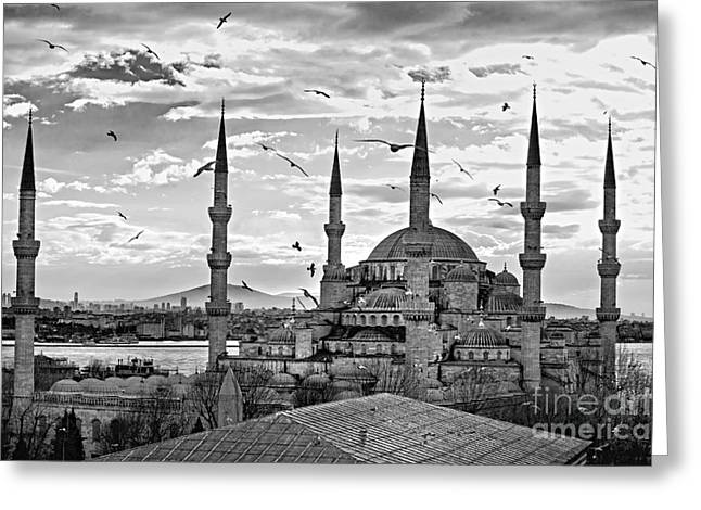 The Blue Mosque - Istanbul Greeting Card by Luciano Mortula