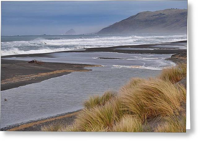 The Lost Coast Greeting Card