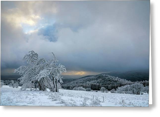 Typical Snowy Landscape In Ore Mountains, Czech Republic. Greeting Card