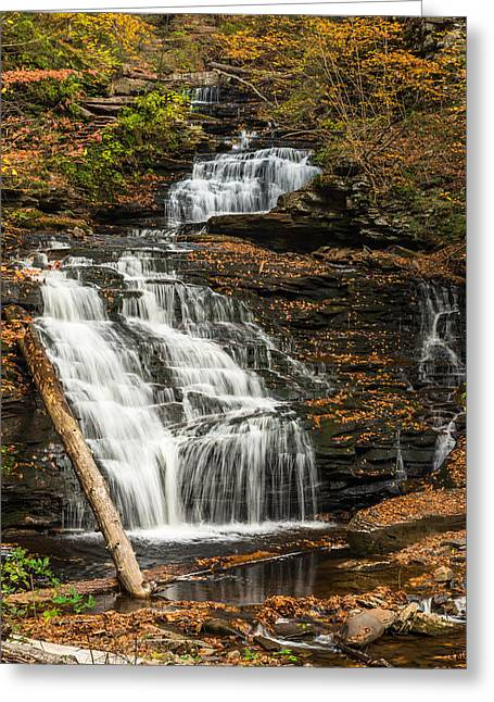 Ricketts Glen State Park Pennsylvania Greeting Card
