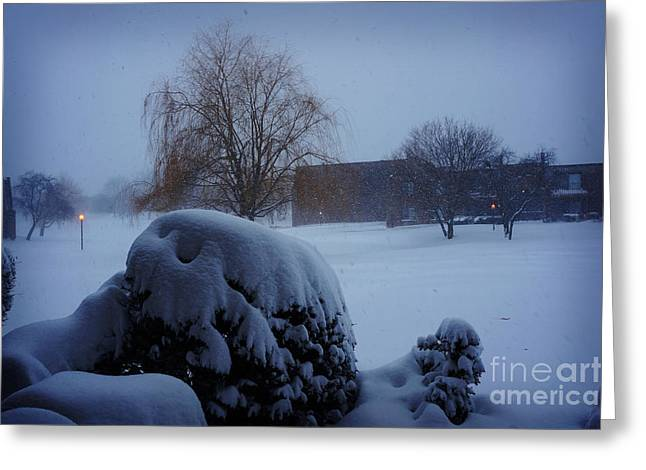 Winter Landscape  Greeting Card by Celestial Images
