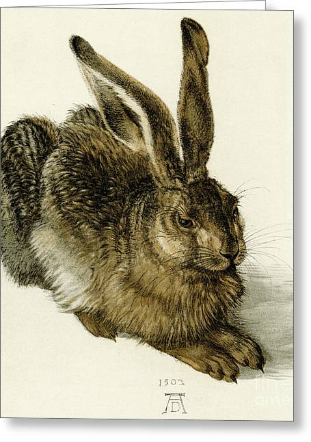 Young Hare Greeting Card