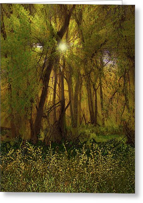 Greeting Card featuring the photograph 4368 by Peter Holme III