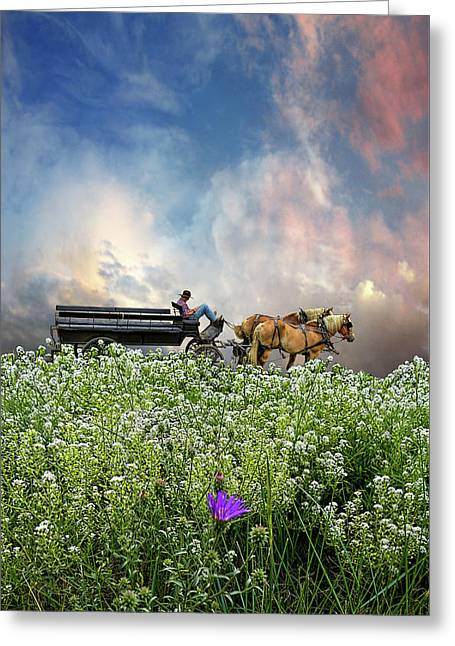 Greeting Card featuring the photograph 4376 by Peter Holme III
