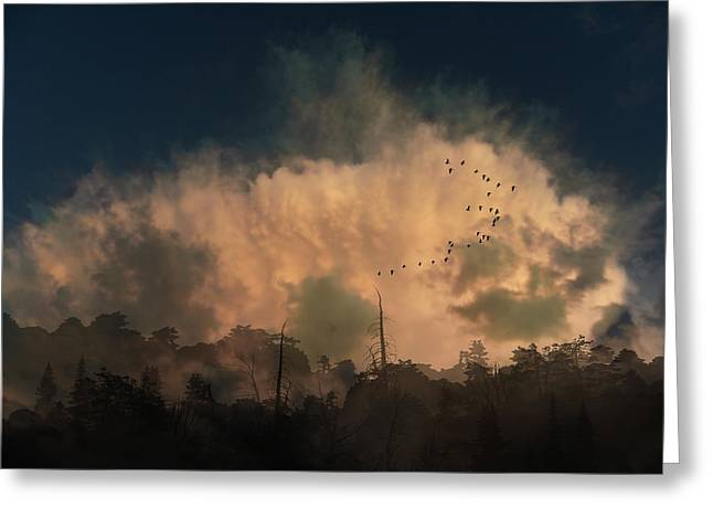 Greeting Card featuring the photograph 4382 by Peter Holme III