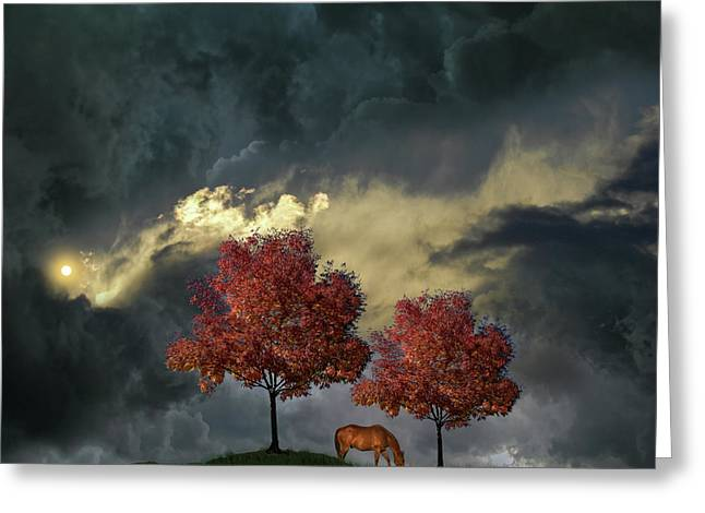 Greeting Card featuring the photograph 4384 by Peter Holme III