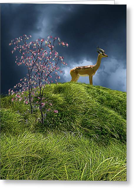 Greeting Card featuring the photograph 4388 by Peter Holme III