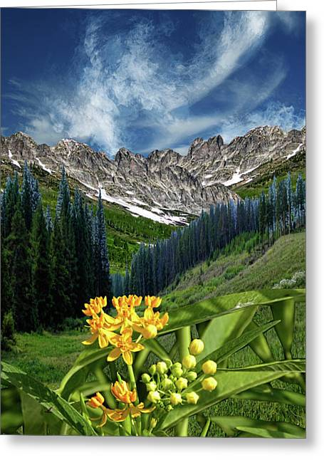 Greeting Card featuring the photograph 4415 by Peter Holme III