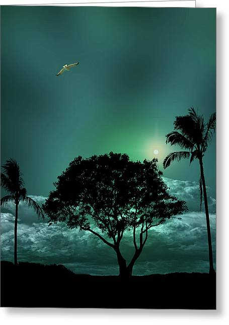 Greeting Card featuring the photograph 4420 by Peter Holme III