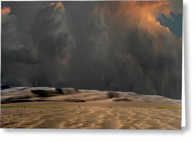 Greeting Card featuring the photograph 4450 by Peter Holme III