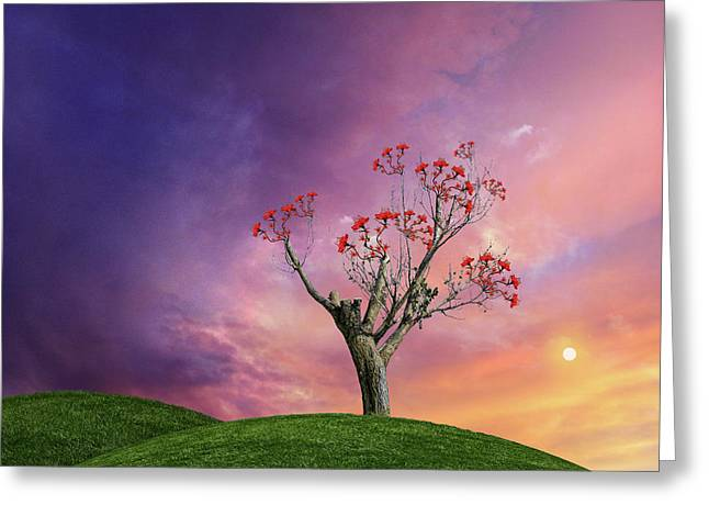 Greeting Card featuring the photograph 4451 by Peter Holme III