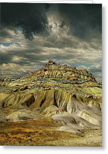 Greeting Card featuring the photograph 4453 by Peter Holme III