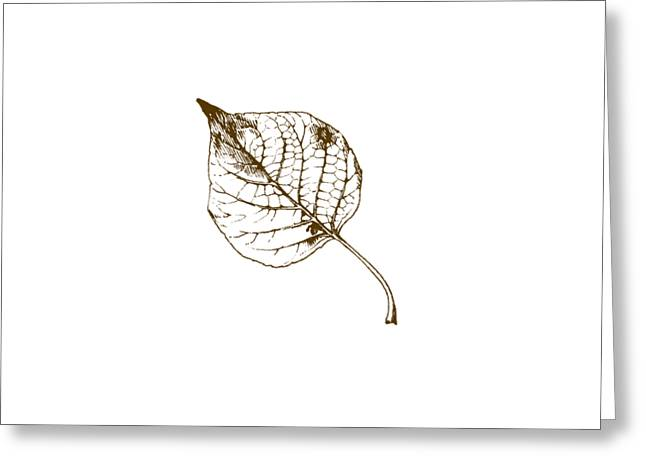Autumn Day Greeting Card by Chastity Hoff