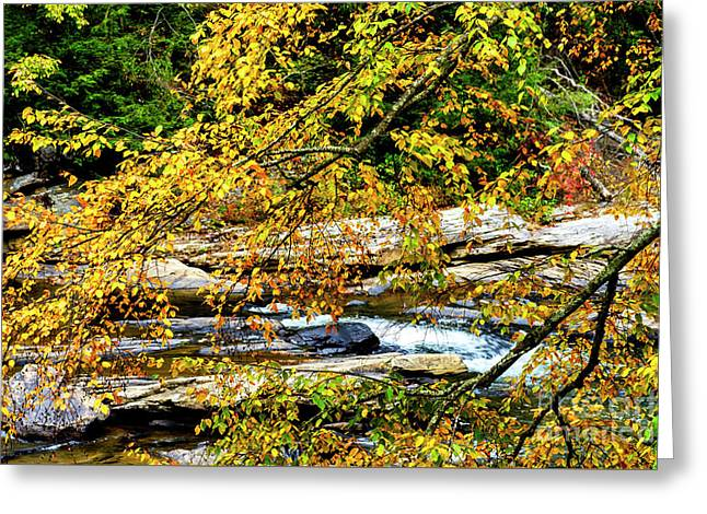 Autumn Middle Fork River Greeting Card by Thomas R Fletcher