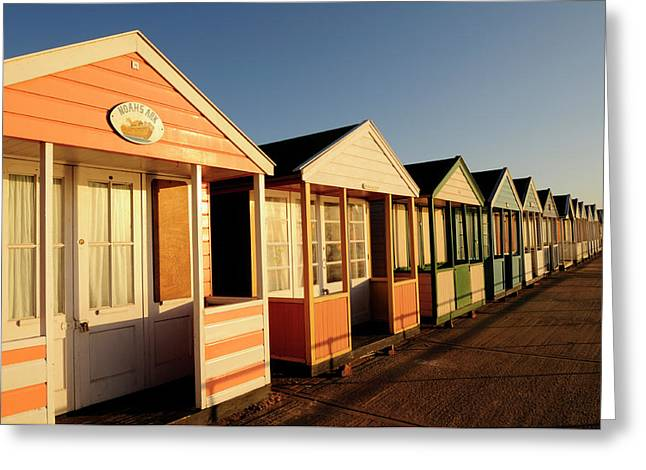Beach Huts At Southwold Greeting Card by Liz Pinchen