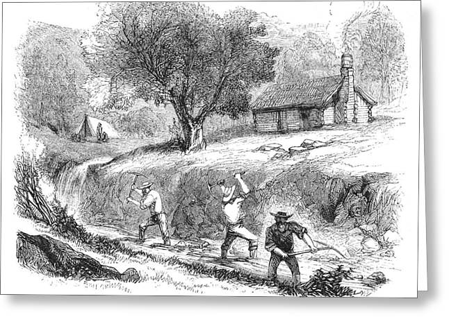 Sluice Greeting Cards - California Gold Rush, 1860 Greeting Card by Granger