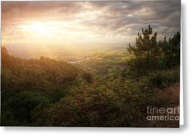 Countryside Landscape Greeting Card