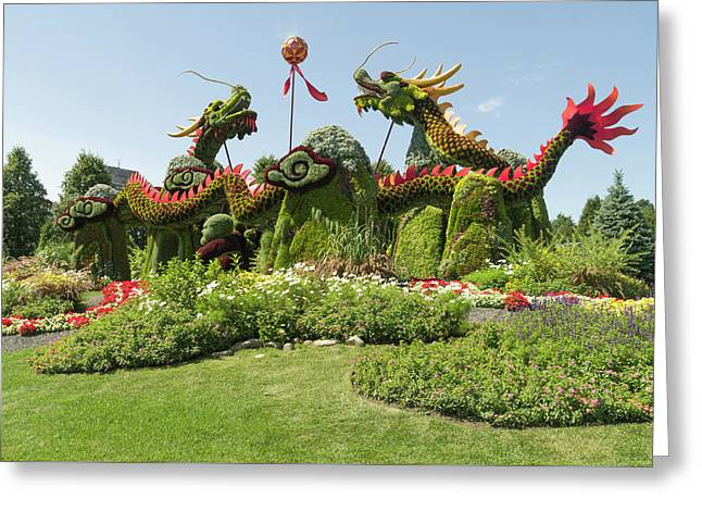 From Beijing Is  Blessing Of The Good Omen Dragons. Greeting Card