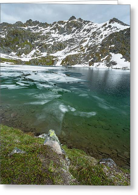Gold Cord Lake Greeting Card by Jon Manjeot