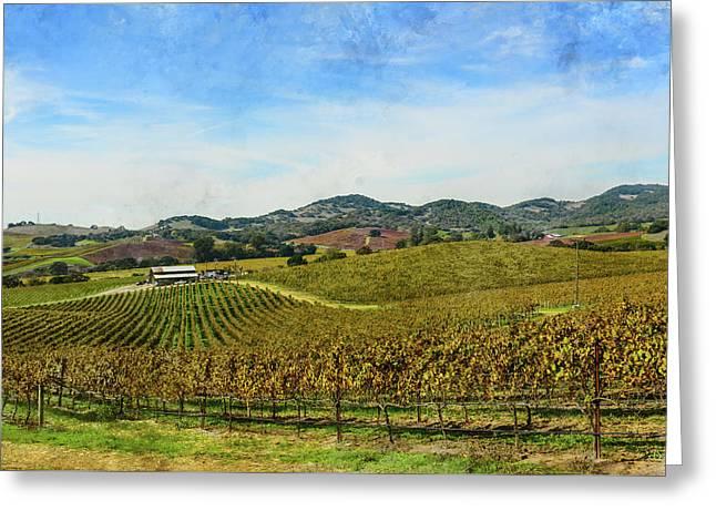 Napa Valley California Vineyard Greeting Card by Brandon Bourdages