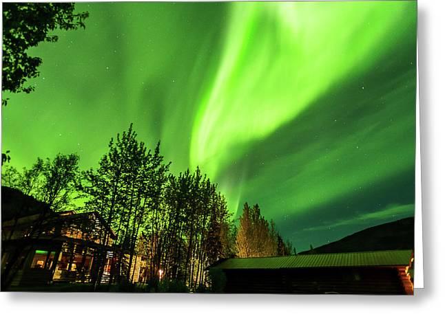 Northern Lights, Aurora Borealis At Kantishna Lodge In Denali National Park Greeting Card